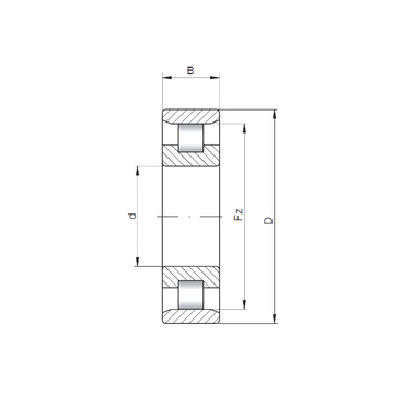 N3040 ISO Cylindrical Roller Bearings