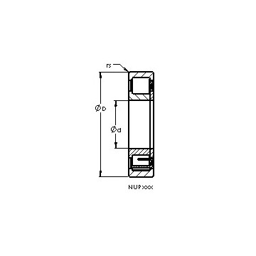 NUP204 E AST Cylindrical Roller Bearings